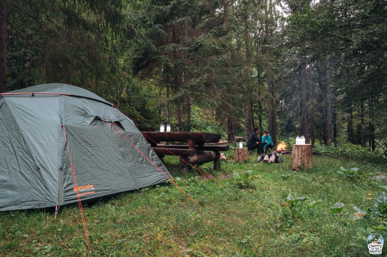 Valea Iadului - cascade pitorești și natură sălbatică